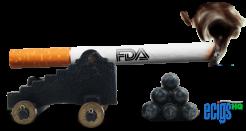 The FDA's War on E-cigarettes